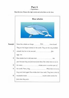 Interactive worksheet Reading and writing  movers