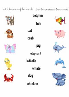 Interactive worksheet Animales en inglés
