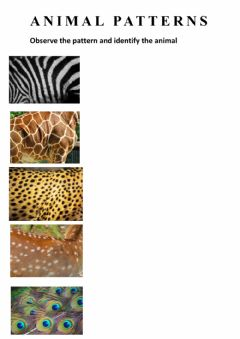 Ficha interactiva Animal patterns