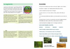 Interactive worksheet Vegetación