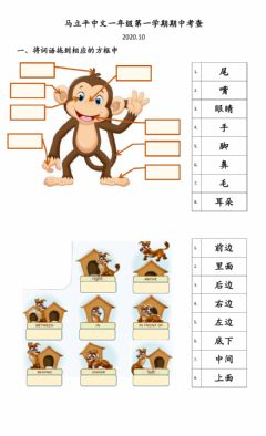 Interactive worksheet 一年级1-1期中考查