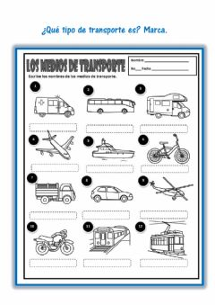 Interactive worksheet Tipos de transportes