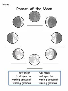 Interactive worksheet Moon Phases
