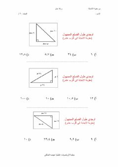 Interactive worksheet نظرية فيثاغورس 1