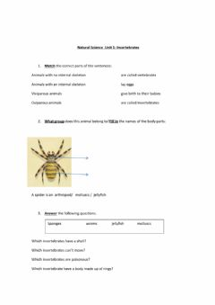 Interactive worksheet Invertebrates