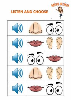 Interactive worksheet The face