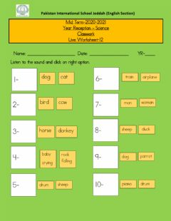 Interactive worksheet Live worksheet 12