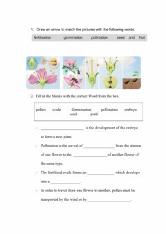 Interactive worksheet PLANT REPRODUCTION