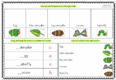 Interactive worksheet The Very Hungry Caterpillar - Lifecycle