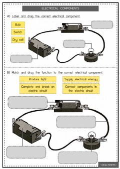 Interactive worksheet Electrical Components