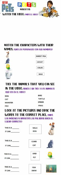 Interactive worksheet Pets: Watch the video