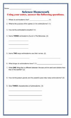 Interactive worksheet Echinoderm Homework