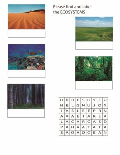 Interactive worksheet Ecosystems, Goods and Services, Life Processes, Cell Organization
