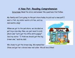 Interactive worksheet A New Pet Reading Comprehension