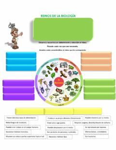Interactive worksheet Cinco reinos de la biologia