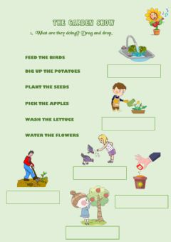 Interactive worksheet The garden show