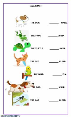 Interactive worksheet What animals can do