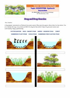 Interactive worksheet Senior Secondary Biology:ECOSYSTEM- Hydrarch Succession