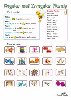 Interactive worksheet Regular and Irregular Plurals