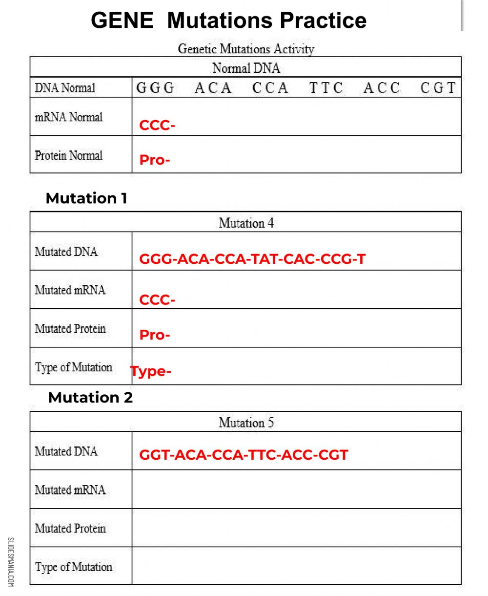 Genetic Mutations Assignment worksheet With Dna Mutation Practice Worksheet Answers