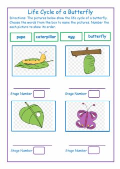 Interactive worksheet Life Cycle of a Butterfly