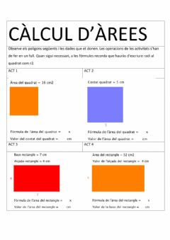 Interactive worksheet Càlcul d'àrees