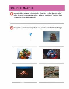 Interactive worksheet Physical and chemical change