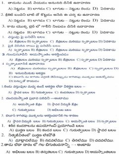 Interactive worksheet బలం