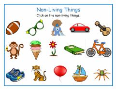 Interactive worksheet Non-Living Things
