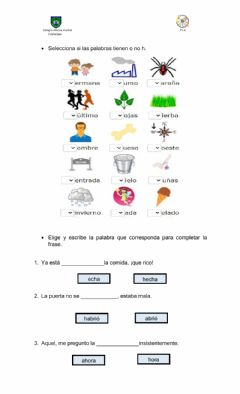 Interactive worksheet Uso h