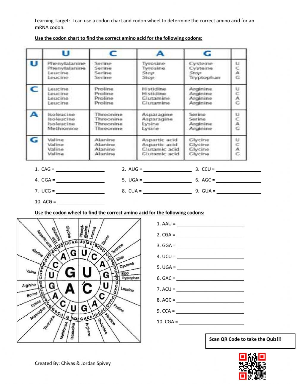 Codon Chart & Codon Wheel Interactive Activity worksheet