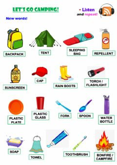 Interactive worksheet Let's go camping!