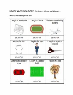 Interactive worksheet Linear Measure