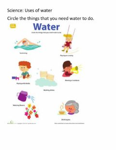 Ficha interactiva Science Uses of water