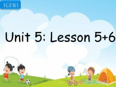 Interactive worksheet Unit 5-lesson 5,6
