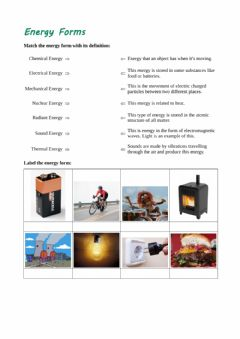 Interactive worksheet Energy forms