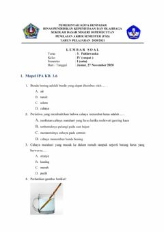 Interactive worksheet PAS Tema 5 IPA
