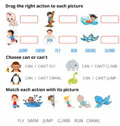 Interactive worksheet Animal actions