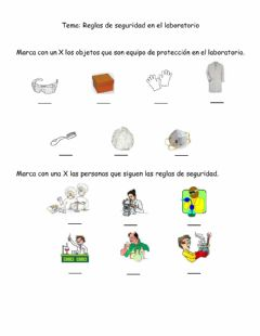 Interactive worksheet Reglas de seguridad en el laboratorio