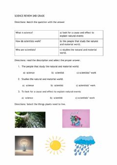 Ficha interactiva SCIENCE REVIEW 2nd grade