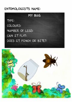 Interactive worksheet Bugs research
