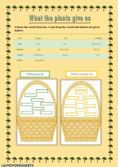 Interactive worksheet What we get from plants