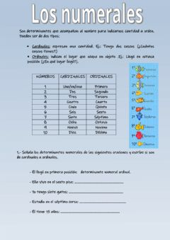 Interactive worksheet Determinanates ordinales