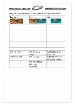 Interactive worksheet Groups of animals