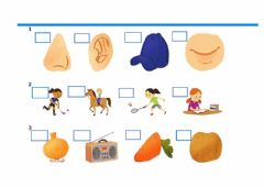 Interactive worksheet Choose the different picture