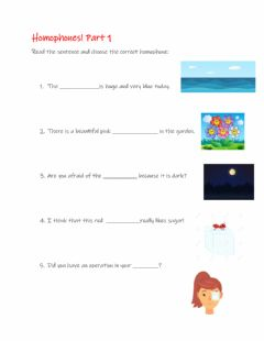 Interactive worksheet Homophones 1