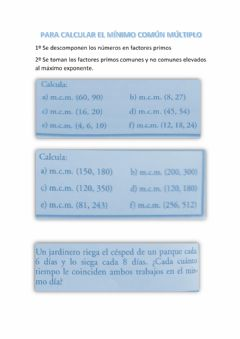 Interactive worksheet Calcula el m.c.m