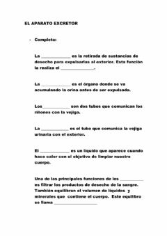 Interactive worksheet Aparato excretor