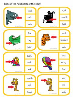 Interactive worksheet Animals. Parts of the body.