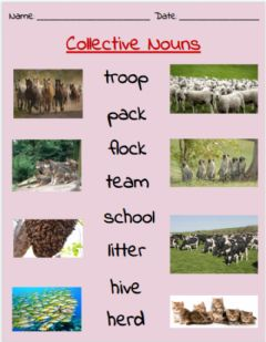 Ficha interactiva Collective Nouns Match